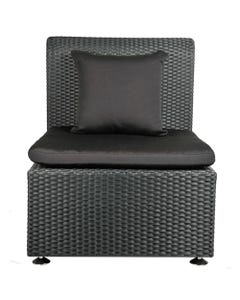 Palm Chair Black - SALE ONLY